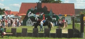 Pferdesportfreunde
